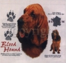 Motiv Blood Hound 4