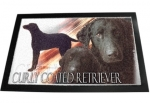 Designer Fussmatte Curly Coated Retriever / kraus gelockter Retr