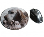 Mousepad English Setter