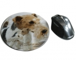 Mousepad Fox Terrier 1 Drahthaar