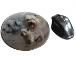 Mousepad Irish Glen of Imaal Terrier