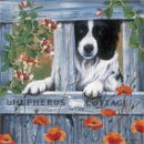 Puzzle Border Collie